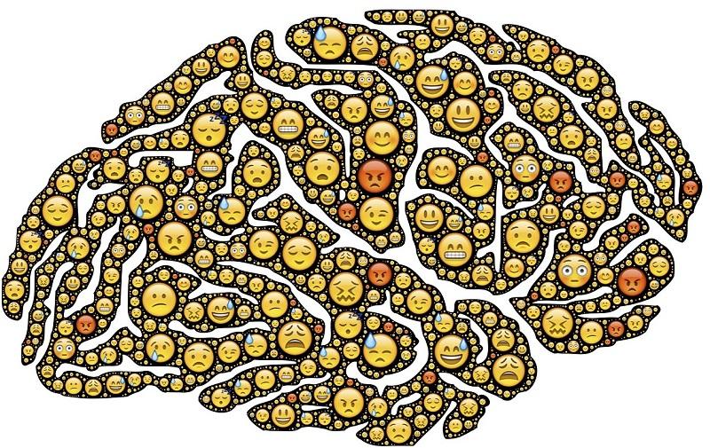 brain-954816_1280
