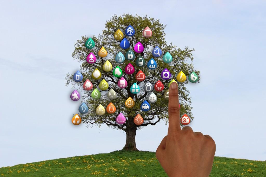 tree-834129_1920
